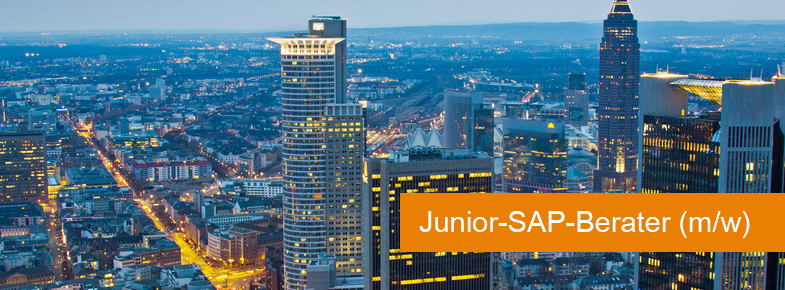 Junior sap berater bartolome r der ag for Sap junior berater jobs